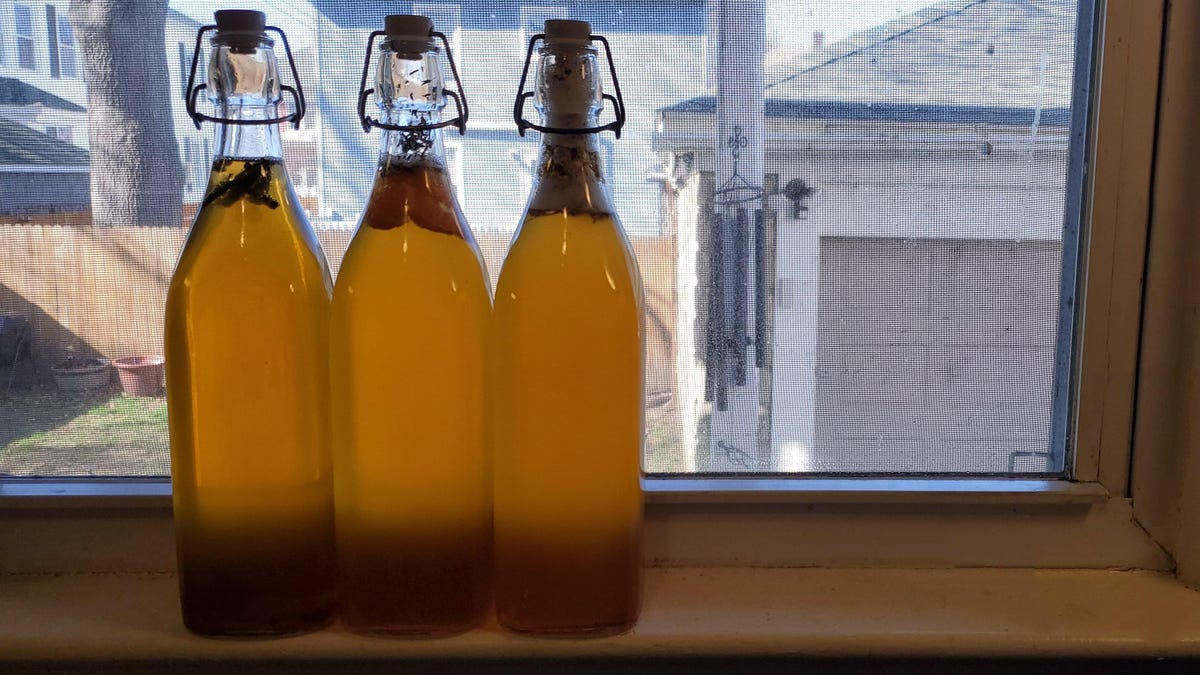 How to Brew Your First Batch of Kombucha